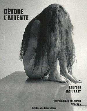 CouvertureD_vorel_attenteLaurentBouisset-6be94