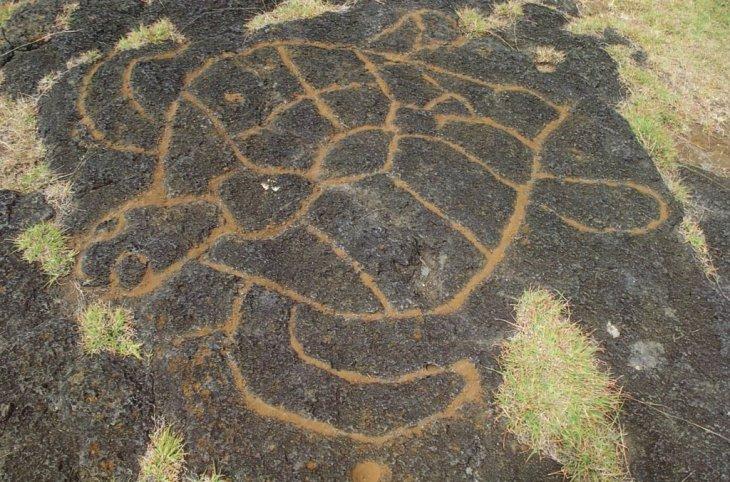 Île de Pâques - Pétroglyphe (Tortue)